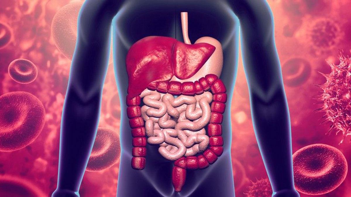 especialidad-de-aparato-digestivo-en-marbella